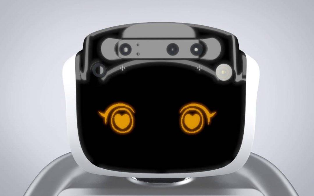 Qué es el Robot Sanbot