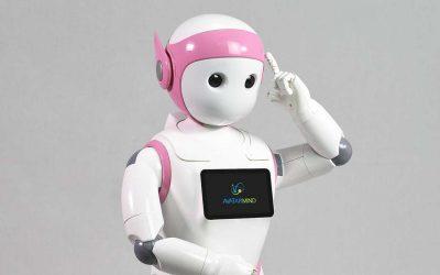 El robot iPal
