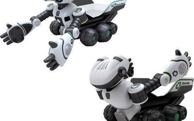 El robot Roboscooper